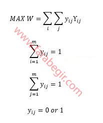 معادله روش تخصیص خطی